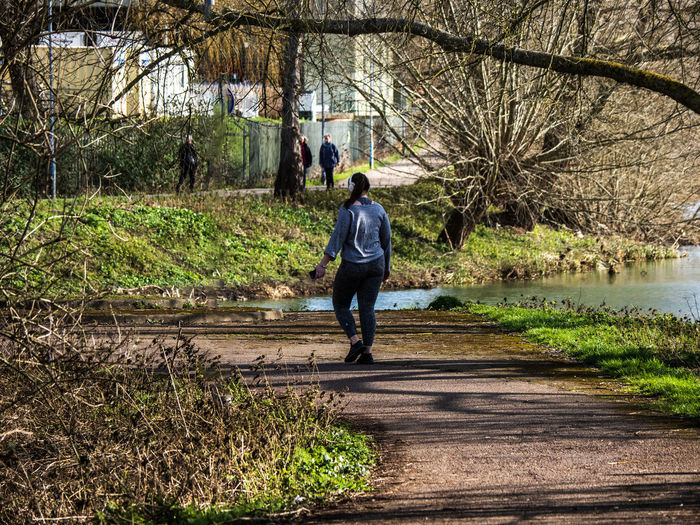 Rear view of woman walking on footpath by trees