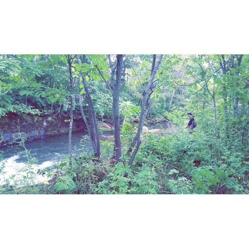 釣り River Fishing TheDay