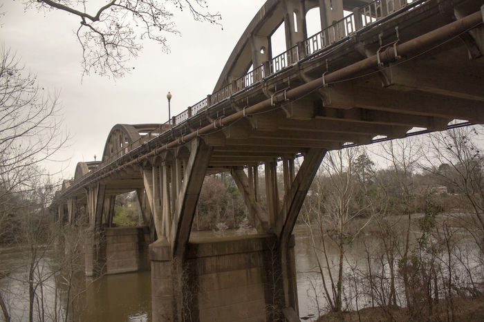 Architecture Bare Tree Branch Bridge - Man Made Structure Built Structure Connection Day Low Angle View Nature No People Outdoors River Sky Transportation Tree Water