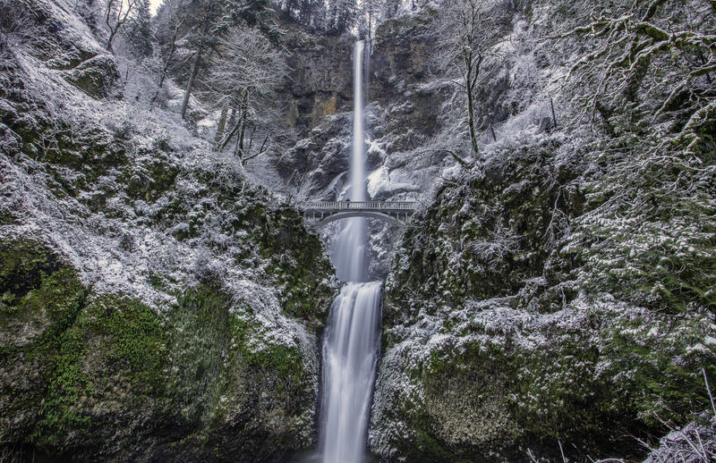 Low angle view of waterfall in forest during winter