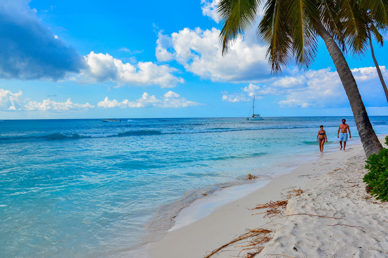 Adult Beach Beauty Beauty In Nature Blue Cloud - Sky Day Horizon Over Water Human Body Part Idyllic Island Nature Outdoors Palm Palm Tree People Postcard Relaxation Sand Sea Sky Tranquil Scene Tropical Climate Vacations Water