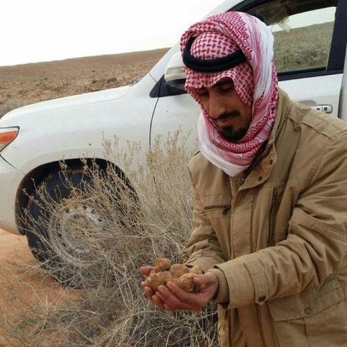 أنا و أنا لاقطن فقع ( الكمأة ) ذيك السنة لقطنا الفقع لم جهة الهبكة كل من نشدن عن متسانة قلت له حول ذيك الهجرة ( الهبكة ) راح يدور لكنه يرجع مفلس بريدة السعودية  تصويري  تصوير  KSA Desert Nature Portrait Portraits Snapchat