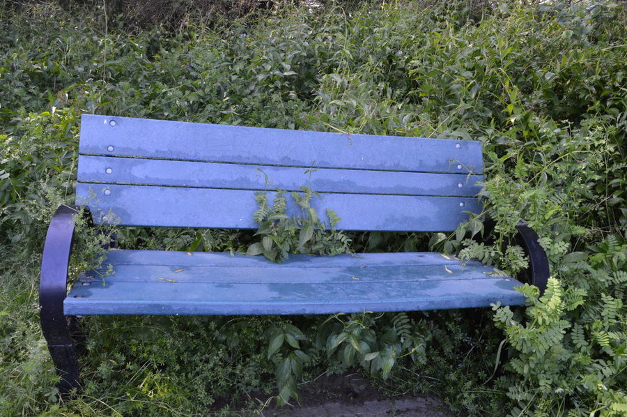 #bench #Blue #enchanted Forrest #EyeEm Best Shots #nature_collection #EyeEmNaturelover #nature #objects #simple #sunset #sun #clouds #skylovers #sky #nature #beautifulinnature #naturalbeauty #photography #landscape #travel