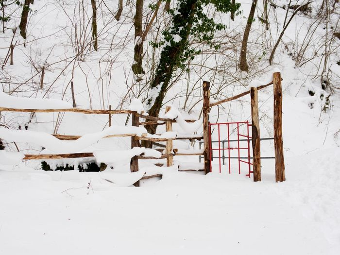 EyeEmNewHere San Benedetto In Alpe Emiliaromagna Italia Winter Snow Cold Temperature Tree Weather Nature No People Covering Outdoors Tranquility Gate Fence