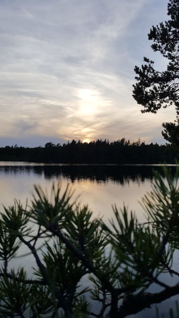 Reflection Tree Water Lake Landscape No People Nature Outdoors Sky Day Hiking Forest Tree Sunsets Sunlight