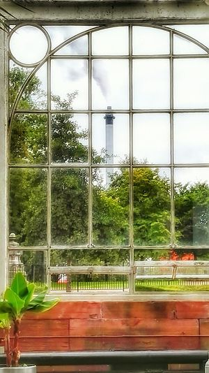 Looking Out Of The Window Glass House