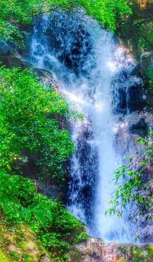 Beauty In Nature For I Grew Up The Mountains Mountains And Valleys Eye Em Around The World Check This Out Naturelovers Outdoor Photography Nobody Around Chasing Waterfalls In The Woods In The Forest Alwaysaventurous A Picture Like This ❤ Creekside Trail Japan Scenery In Saga Japan Waterfall #water #landscape #nature #beautiful