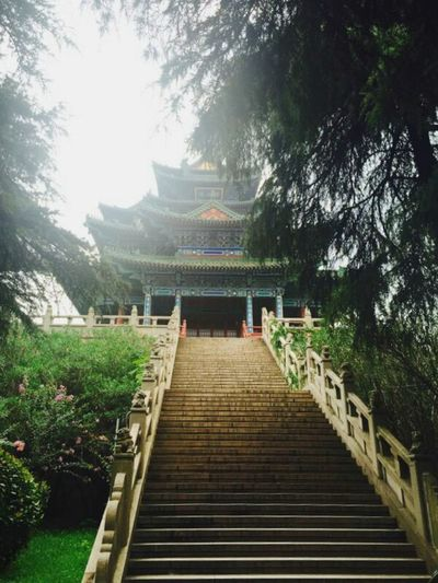 Steps Steps And Staircases Travel Destinations Tree Staircase Chinese Architecture History No People Outdoors Architecture Day Nanjing.China
