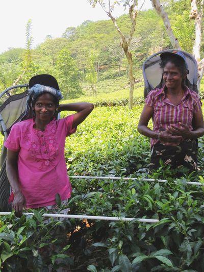 Colombo SriLanka Travel Photography Tea Plantation  Eye4photography  EyeEm Gallery Travelingtheworld  People