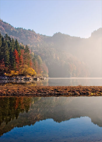 Autumn Austria Schwarzensee Sunlight