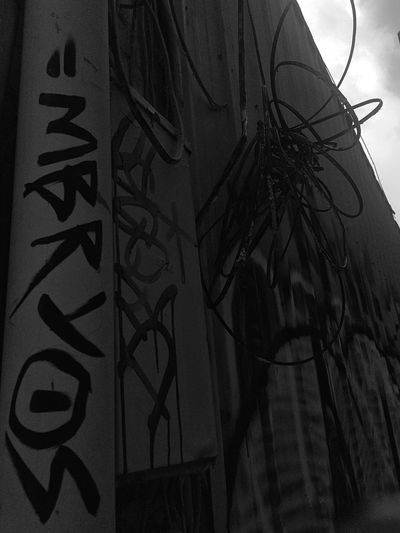 Built Structure No People Architecture Building Exterior Indoors  Day Low Angle View Close-up Blackandwhite Seattle Graffiti Alley Embryos Art Is Everywhere