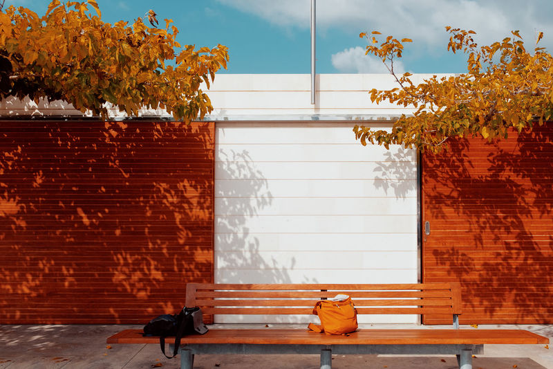 For Two Fourdayspalma Architecture Built Structure Plant Building Exterior Nature Wall Day Tree Outdoors Building Autumn Real People Wall - Building Feature Window Brick Brick Wall Sunlight Relaxation Change Orange Color Autumn Mood