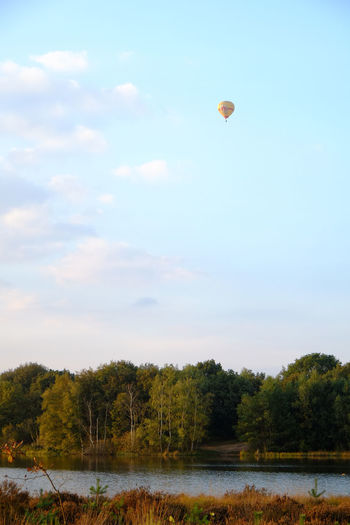 Hot air balloon flying in the distance over a forest lake against a dusk and setting sun sky Sky Tree Plant Beauty In Nature Cloud - Sky Mid-air Scenics - Nature Tranquility Balloon Nature Hot Air Balloon Water Tranquil Scene Day Air Vehicle Flying Growth Non-urban Scene Lake Outdoors No People
