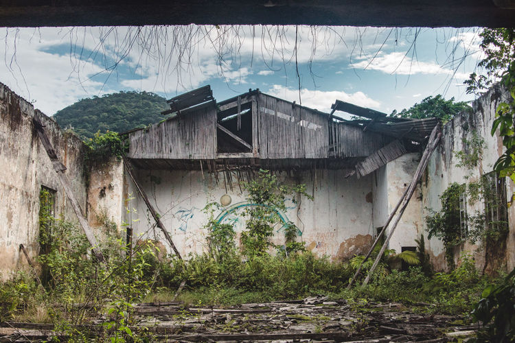 Abandoned prison at Dois Rios on Ilha Grande. Abandoned Abandoned Buildings Abandoned Places Architecture Building Exterior Built Structure Damaged Day Framed Graffiti House Mural Nature Nature No People Outdoors Painting Ruin Ruins Sky Symmetrical Symmetry Tree Wood Yard The Street Photographer - 2017 EyeEm Awards The Architect - 2017 EyeEm Awards BYOPaper! EyeEm Selects