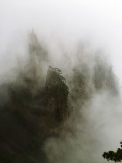 beauty in Nature The pines and clouds of the Mount Huangshan .