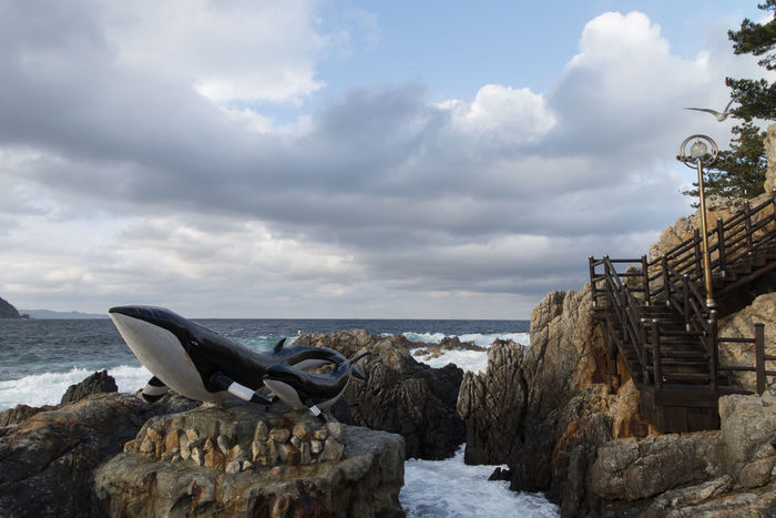Janghohang at Samcheok, Gangwondo, South Korea Cloud - Sky Cold Temperature Day Horizon Over Water Janghohang Nature No People Outdoors Sea Seaside Sky Statue War Water Whale Whaleshark