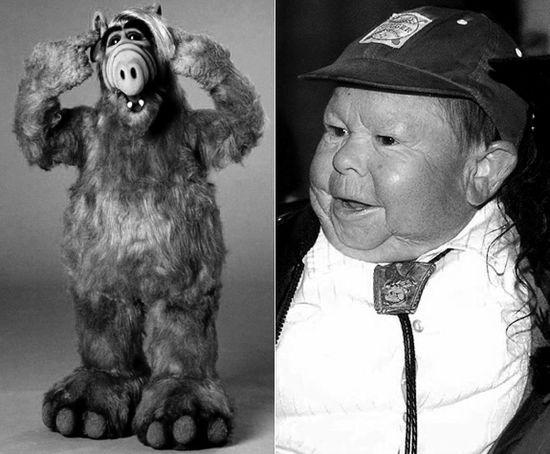'Alf' Star Michu Meszaros Dies at 76 R.I.P Alf Childhood Childhood Memories Close-up Day Focus On Foreground Kult Michu Meszaros Portrait Series Figure Television Show Tv Star