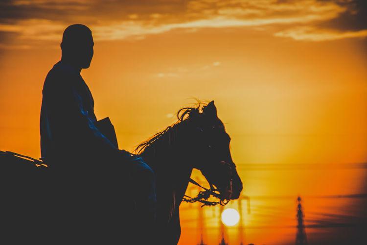 Silhouette man sitting on horse against orange sky