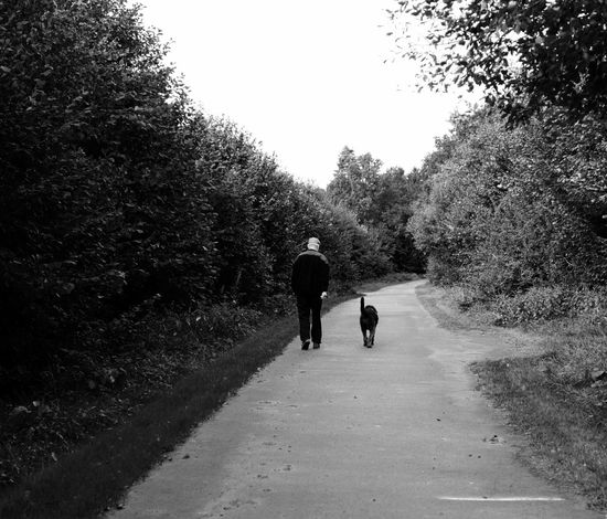Black And White Diminishing Perspective Dog Walker Grosshansdorf Nature Non-urban Scene Rear View Solitude The Way Forward Vanishing Point Walking