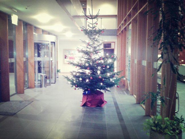 Weihnachtsbaum Christmas tree
