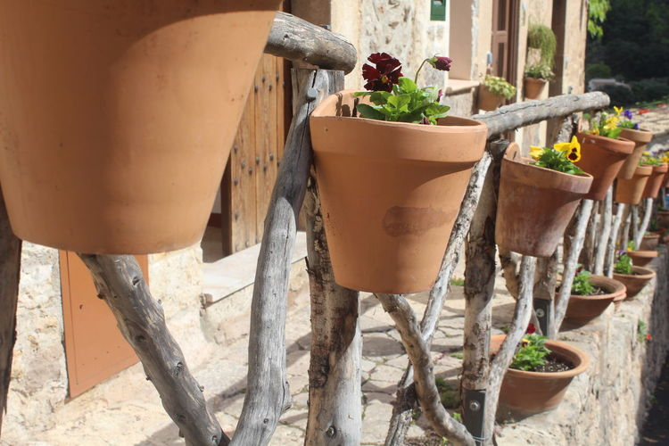 Flower Pot Mallorca Valldemossa Architecture Blumentöpfe Building Exterior Built Structure Can Day Flower Pot Focus On Foreground Front Or Back Yard Gardening Growth Metal Nature No People Outdoors Plant Potted Plant Seat Sunlight Tree Watering Can Wood - Material