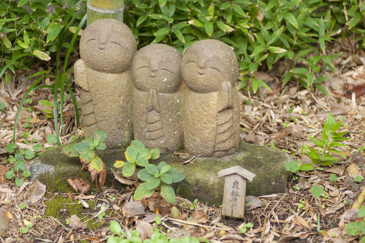 Representation Leaf Plant Part Plant Art And Craft No People Human Representation Nature Sculpture Creativity Day Craft Solid Statue Growth Land Field Outdoors Stone Material High Angle View Temple Of Japan α900 Jizou