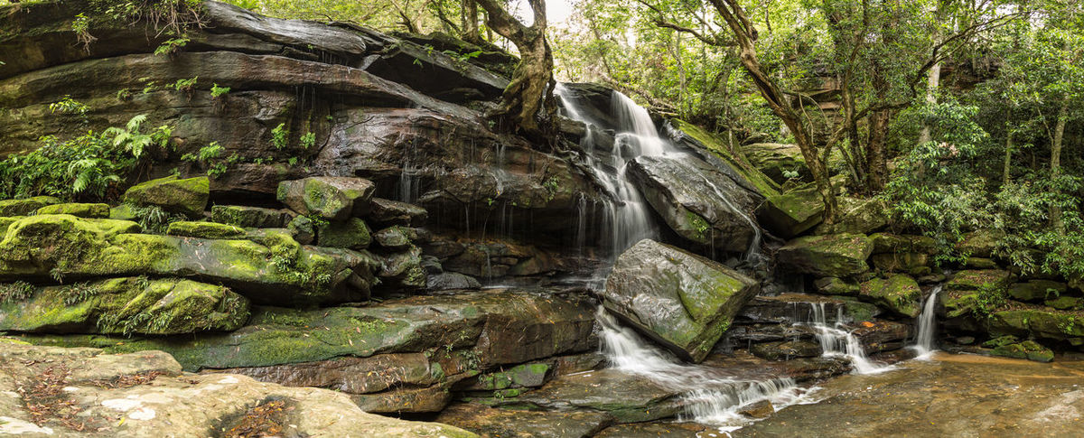 Beauty In Nature Day Environment Environmental Conservation Forest Freshness Landscape Moss Nature Outdoors Rainforest River Rock - Object Rock Shelf Scenics Stream - Flowing Water Travel Destinations Tree Water Waterfall Wet Rocks