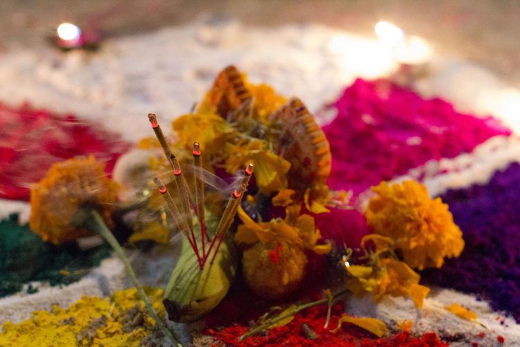 Close-up Flower Marigold Petal Religion Spirituality Tihar Festival Of Light And Colour