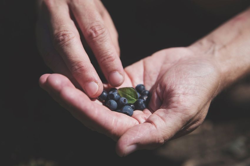EyeEm Gallery EyeEm Getting Inspired Blueberries Summer EyeEm Nature Lover EyeEm Best Shots Human Hand Human Body Part One Person Fruit Holding Food Food And Drink Healthy Eating Freshness Real People Close-up Outdoors Day People
