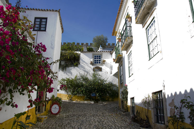 Impressions of the medieval city of Óbidos in Portugal. MedievalTown Obidos Portugal Portugal Architecture Building Exterior Built Structure City Clear Sky Day Flower House Medieval Castle Nature No People Outdoors Residential Building Sky Tourism Tree Óbidos