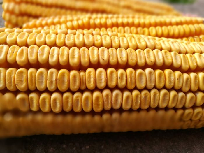 Close-Up Of Sweet Corn