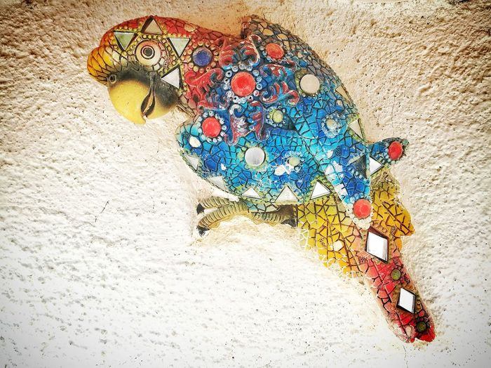 Papagai Multi Colored High Angle View Pattern Day No People Outdoors Close-up Smartphonephotography Mosaic Papagai