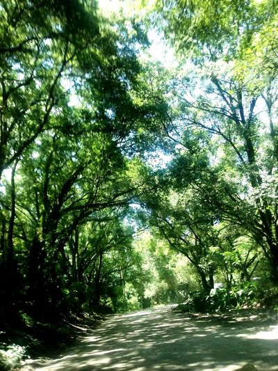 Lovin Country Roads Love This View Loving Nature Peace_of_mind