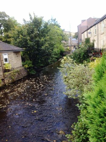 Nature On Your Doorstep Babbling brook