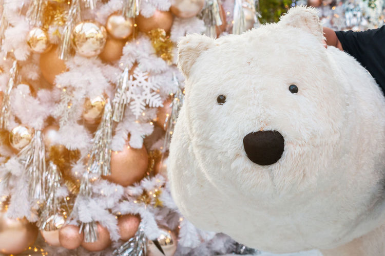 Event New Year Polar Bear Thailand Animal Themes Celebration Childhood Christmas Christmas Decoration Close-up Human Body Part Mall Outdoors Portrait Snowman Stuffed Toy White