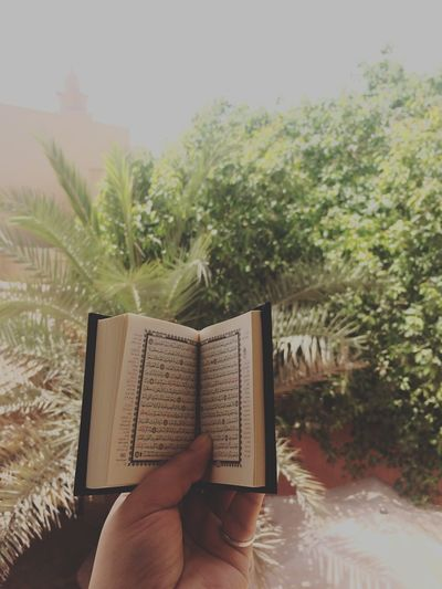 Holiday POV Holyquran Koran POV From My Point Of View Summer2015 Ramadan  In vacation and leisure read the Holy Quran ❤️