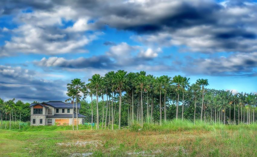 Cloud - Sky Sky House Built Structure Grass Architecture Outdoors Building Exterior Day No People Tree Nature