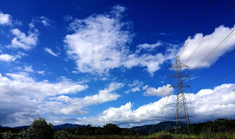 Star - Space Sky Cloud - Sky Low Angle View Nature Tree Beauty In Nature Growth No People Electricity  Caroni Swamp Green Color Landscape Growth Scenics Outdoors Day