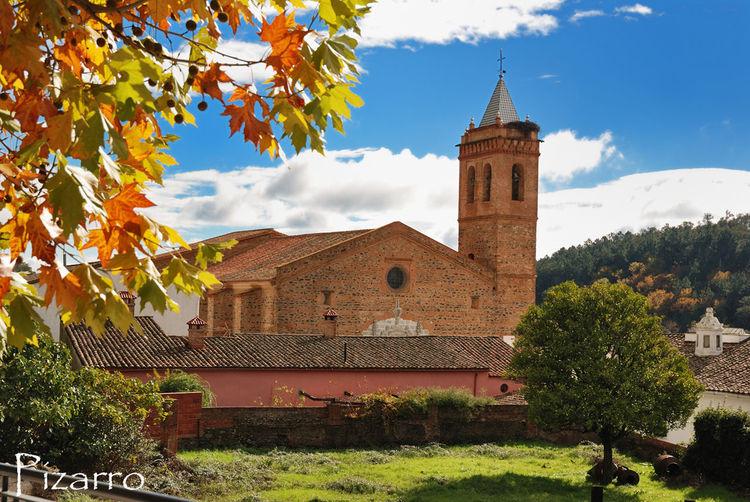 Tree Nature Paisaje Naturaleza Almonaster Huelva España Sun Sol Iglesia