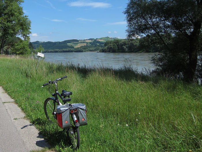 Cycling holiday along River Danube Danube Beauty In Nature Bicycle Cycling Holiday Danube River Day Grass Green Color Land Vehicle Mode Of Transport Outdoors Scenics Stationary Tranquility Transportation Water