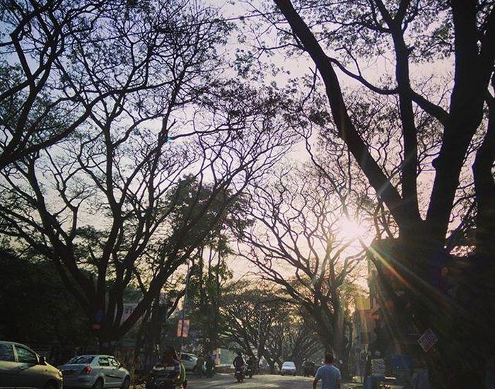 Igersbengaluru EarlyMornings Vijaynagar Sunrise Springsummer Emtyroads Nammabengaluru Insta_bengaluru OneplusShot Igersoftheday Ig_worldclub Insta_pic Insta_bengaluru 30eggs Instagram Myblr