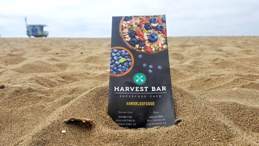 beachside marketing Harvest Bar Sherman Oaks Playa Vista Playa Acai Bowl Smoothies Savory Sea Beach Sand Time Sand Dune Sky Close-up Surf Horizon Coast Crashing Seascape Shore Logo