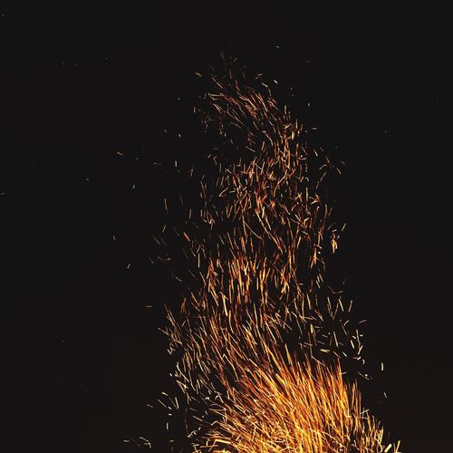 Fire Firecamp Sparkles