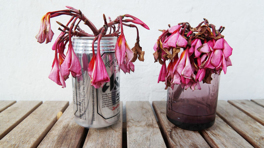 Sadness Wilting Flowers Daytime Dieing Flower No Water Thirsty  Can Dried Plant Flower Wilting
