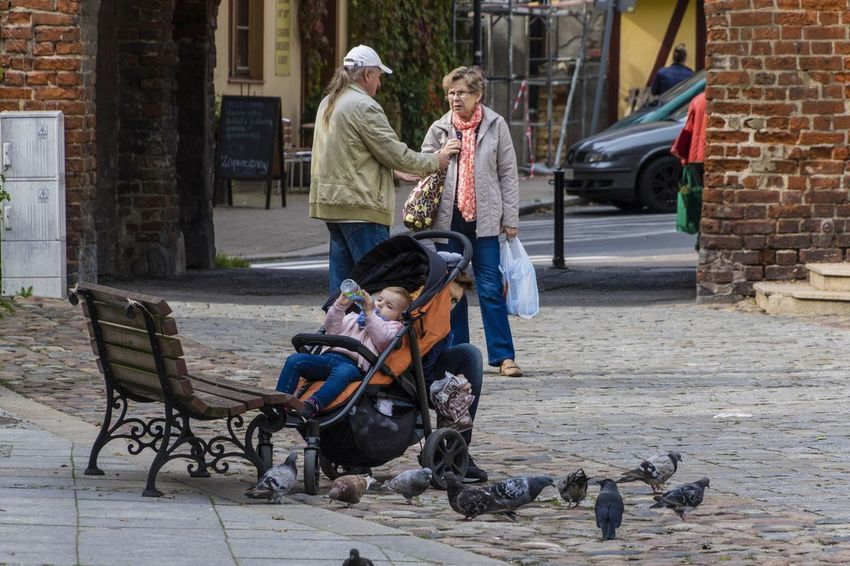 Bench City Life Everyday Life A Baby In A Stroller Child Outdoors Pigeons Scenics Sitting Steet Street Photography Stroller Togetherness Warm Clothing The Street Photographer - 2018 EyeEm Awards