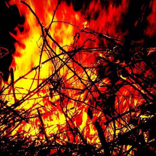Brofire Firebro Bigfire Fire bonfire