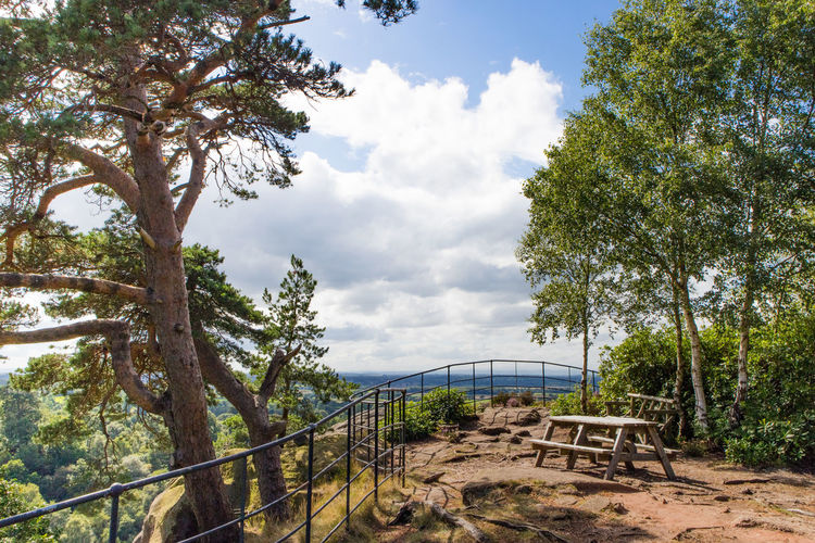 The ultimate picnic spot // Tree Cloud - Sky Nature Outdoors Day Sky No People Scenics Landscape Beauty In Nature Picnic EyeEm Best Edits Hawkstone History Ancient EyeEm Gallery National Park Shropshire Travel Destinations Hawkstoneparkfollies Nature_collection Photography Stock Image Sky And Clouds Nature