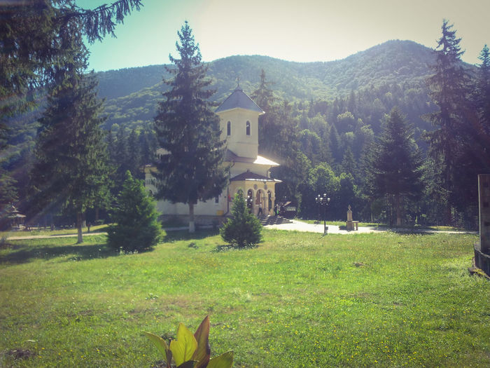 Taking Photos Nature Green Mountains Forrest EyeEm EyeEm Best Shots EyeEm Nature Lover EyeEm Best Edits Check This Out Hello World First Eyem Photo Perfect Weather Romania Made In Romania Summer Sunny Day Relaxing Church Take Me To Church Culture Green Green Green!  Nature_collection EyeEm Best Shots - Nature Eyeemphotography