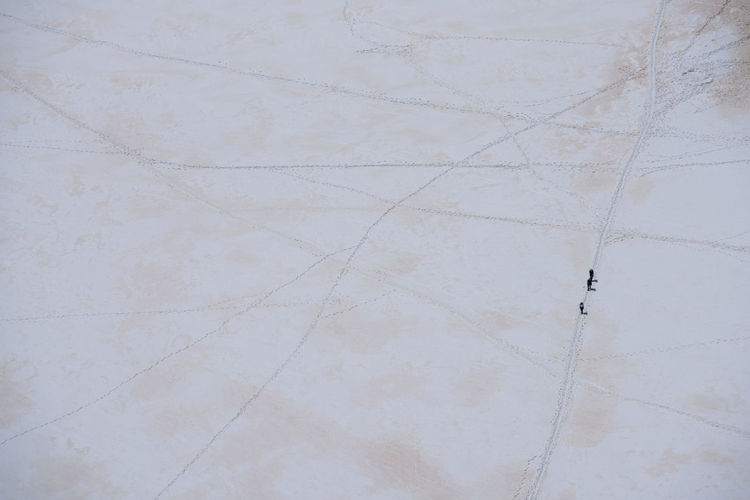 Aerial view of people walking on snow covered land