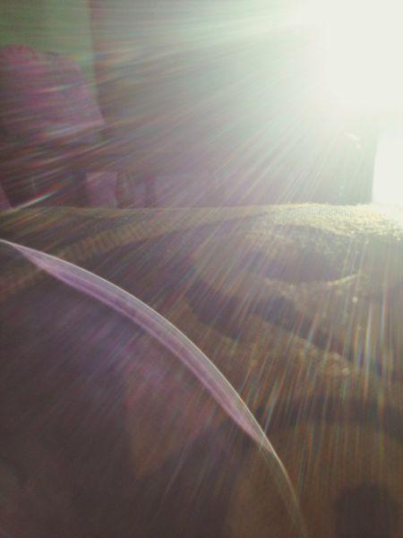 Enjoying The Sun Light And Shadow Lightning Nofilter